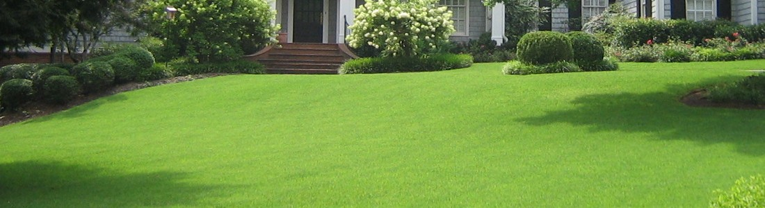 Total Lawn Maintenance
