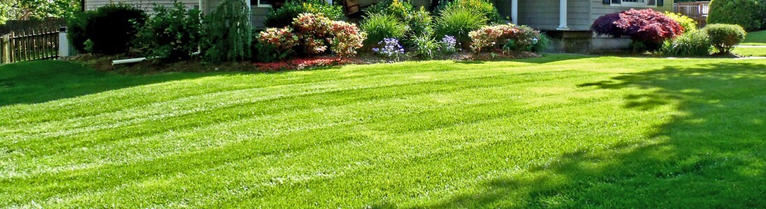 Leaf Removal - Mowing & Mulching